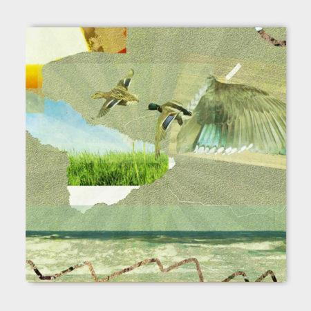 Canvasdoek-100-x-100-Flying-achtergrond