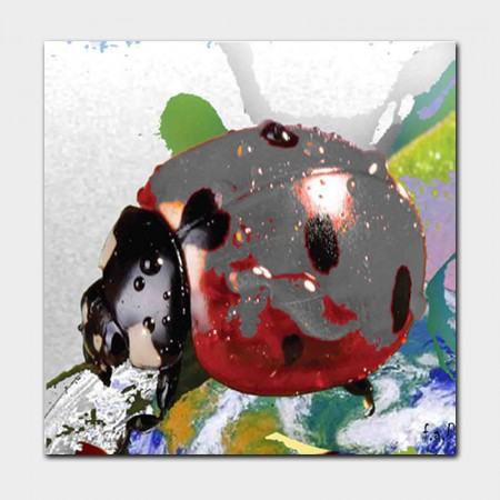 Canvasdoek-100-x-100-cm.-Happiness-achtergrond